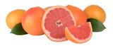 Soczyste greifruty - 63058895