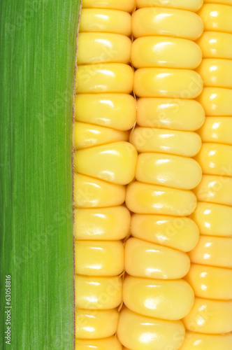 corn closeup