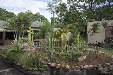 garden in lodge