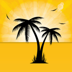 Vector illustration of palm trees .