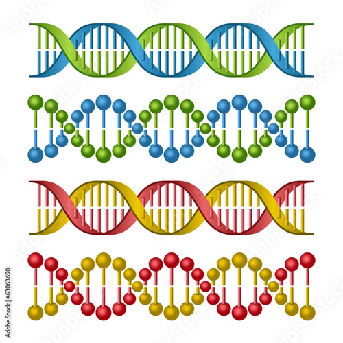 DNA Molecules Set for Science and Medicine Design. Vector