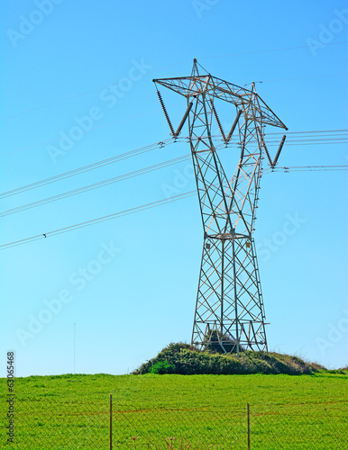 pylon on the grass
