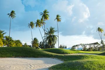 Golf course in Tobago
