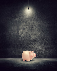 piggy bank under light