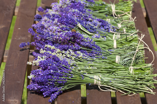 Lavender after harvest on the table