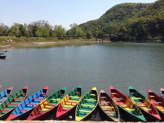 Paddle in Phewa lake on a sunny day