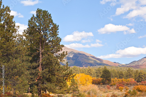 View on Highway in fall all around Durango