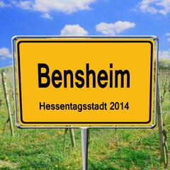 Bensheim, die Hessentagsstadt 2014
