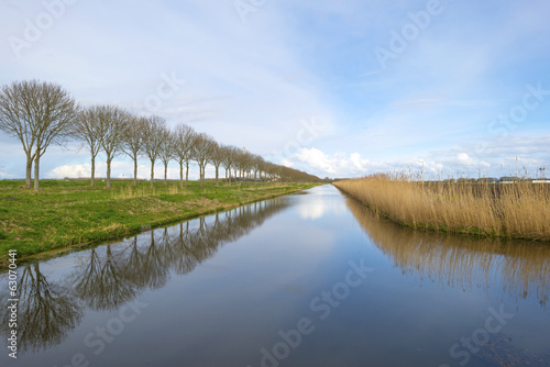 Reflection of trees in a canal in spring