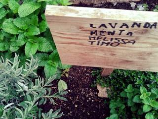 piante aromatiche con cartello di legno