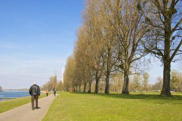 Senior walking along the River Rhine
