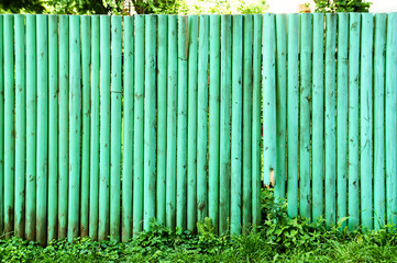 Wooden fence green background.