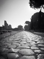 Via Appia Antica e Villa dipinti
