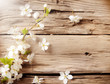 Spring white blossoms on wooden planks