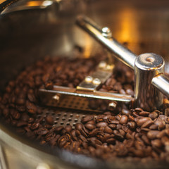 Fresh 100% Arabica coffee beans spinning in a cooler.