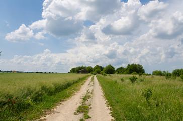 Feldweg durch Kornfelder Wanderweg