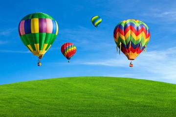 Hot air balloons over green field