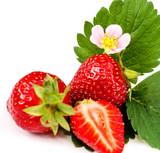 Sommer-Schönheiten: Frisch gepflückte Garten-Erdbeeren :)
