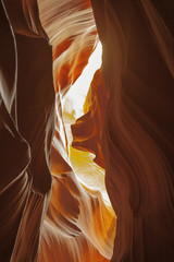 Abstract Color: Looking thru' Peach/Yellow Backlit Canyon Walls