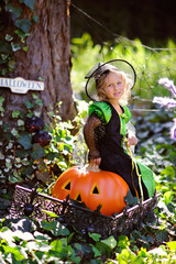 girl in witch costume with jack pumpkin on Halloween