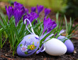 Obrazy na płótnie, fototapety, zdjęcia, fotoobrazy drukowane : Wielkanocne jajka