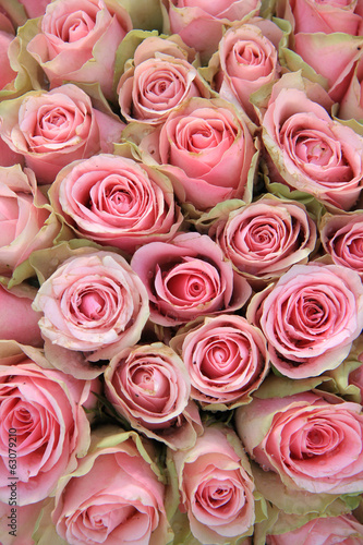 Pink roses in a wedding arrangement