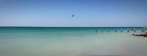 Key West Higg's beach spiaggia