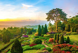 Fototapety Beautiful garden of colorful flowers on hill