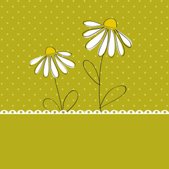 Chamomile card template