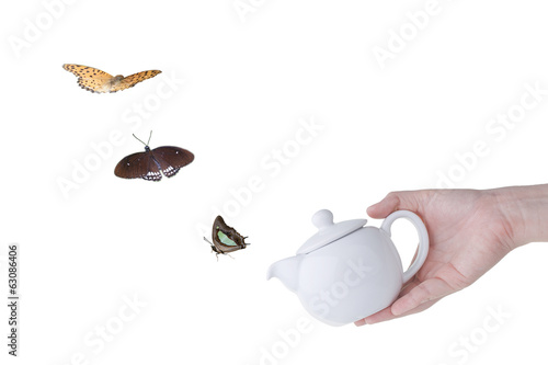 Butterfly flying from teapot spout isolated, The conceptual art