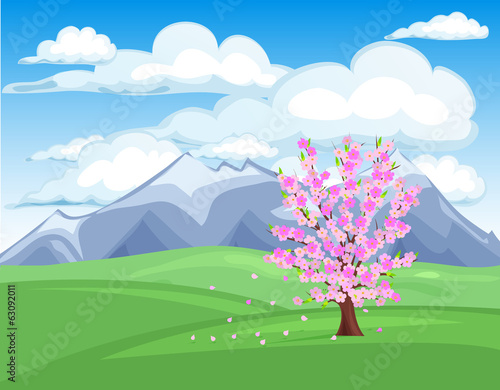 Spring Cherry tree blossom vector