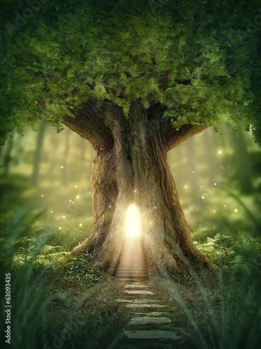 Papiers peints Arbre Fantasy tree house