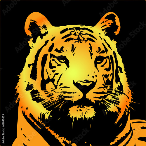 tiger portrait?