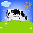 Dairy Cow.Sticker Milk Product.Vector.