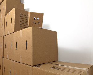Smiling Brown Box
