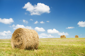 Bales of hay in a large field.