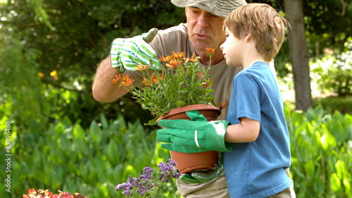 Man showing potted plant to grandson