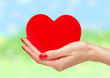 Red heart in woman hands over bright nature background