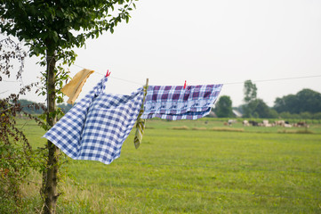 Laundry at the line