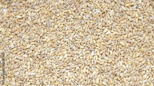 Barley groats are rotated on the table.