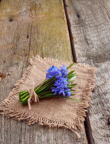 Bouquet from scilla on wooden board.