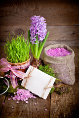 Fresh flowers hyacinths. SPA concept