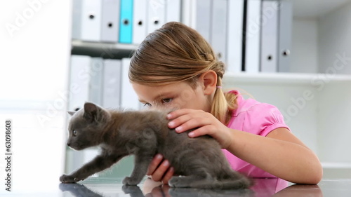 Little girl stroking a grey kitten
