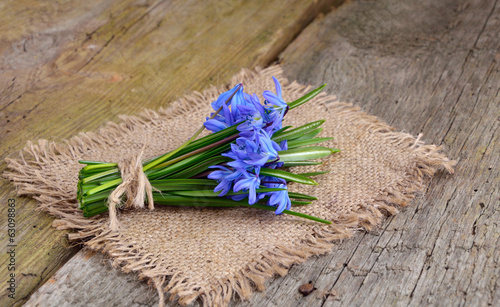 Bouquet from scilla on wooden background.