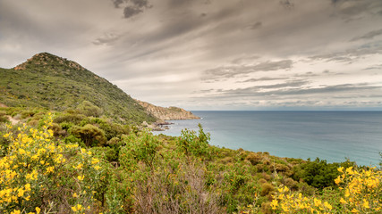 Maquis covered coastline of Desert des Agriates in Corsica