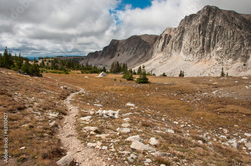 Hiking Trail Through the Medicine Bow