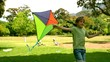 Little boy playing with a kite in the park