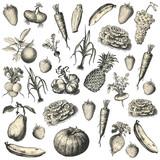 Fototapety Fruits & Légumes