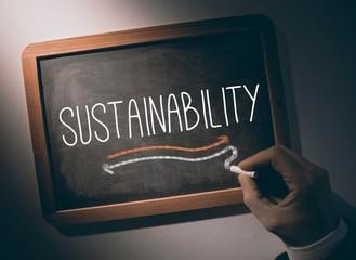 Hand writing Sustainability on chalkboard