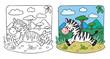 Little Zebra coloring book